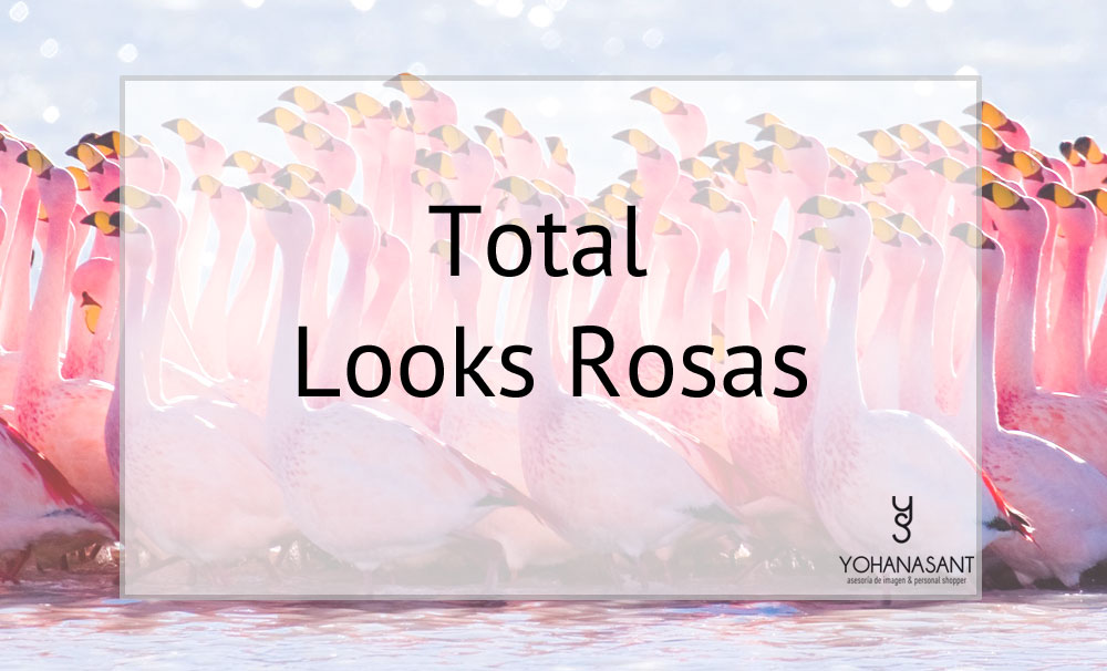 total-looks-rosas